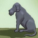 Είχα Έναν Μαύρο Σκύλο. Το Όνομα Του Ήταν Κατάθλιψη. [Βίντεο]
